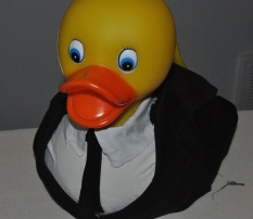 Duck Suit (original design)