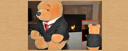 Bear Suit (original design)